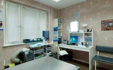 Высокодоходная ветеринарная клиника, Митино