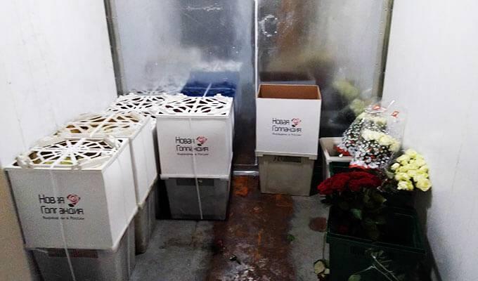 Магазин цветов и подарков с раскрученным сайтом