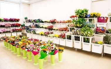 Прибыльный цветочный оптовый магазин-склад