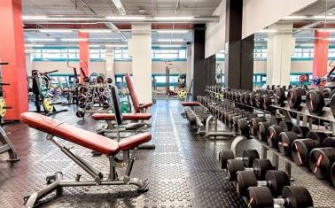 Популярный фитнес-клуб с высокой прибылью