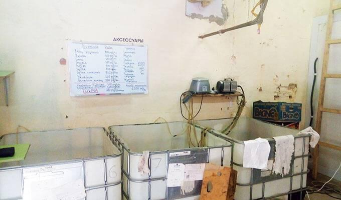 Оптово-розничный магазин раков с высокой прибылью