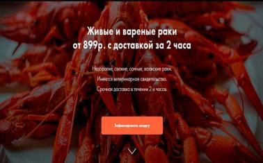 Интернет-магазин раков с настроенной рекламной кампанией