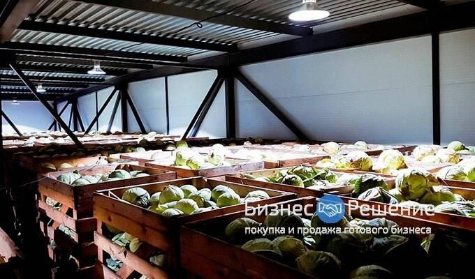 Фабрика кухня в САО