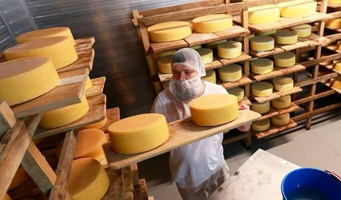 Завод по изготовлению молочной продукции и сыров