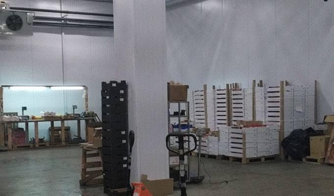 Крупная оптовая компания — торговля фруктами (B2B)