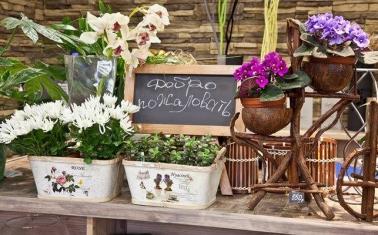 Высокодоходный магазин цветов в спальном районе